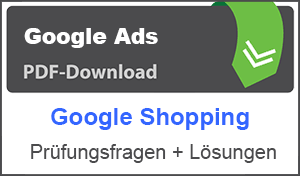 PDF Google Ads Shopping